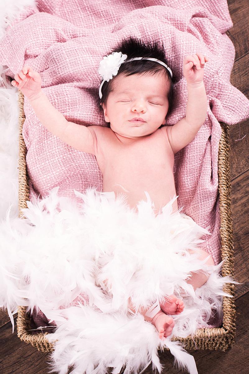 Portrait newborn nouveau-né studio panier couleur
